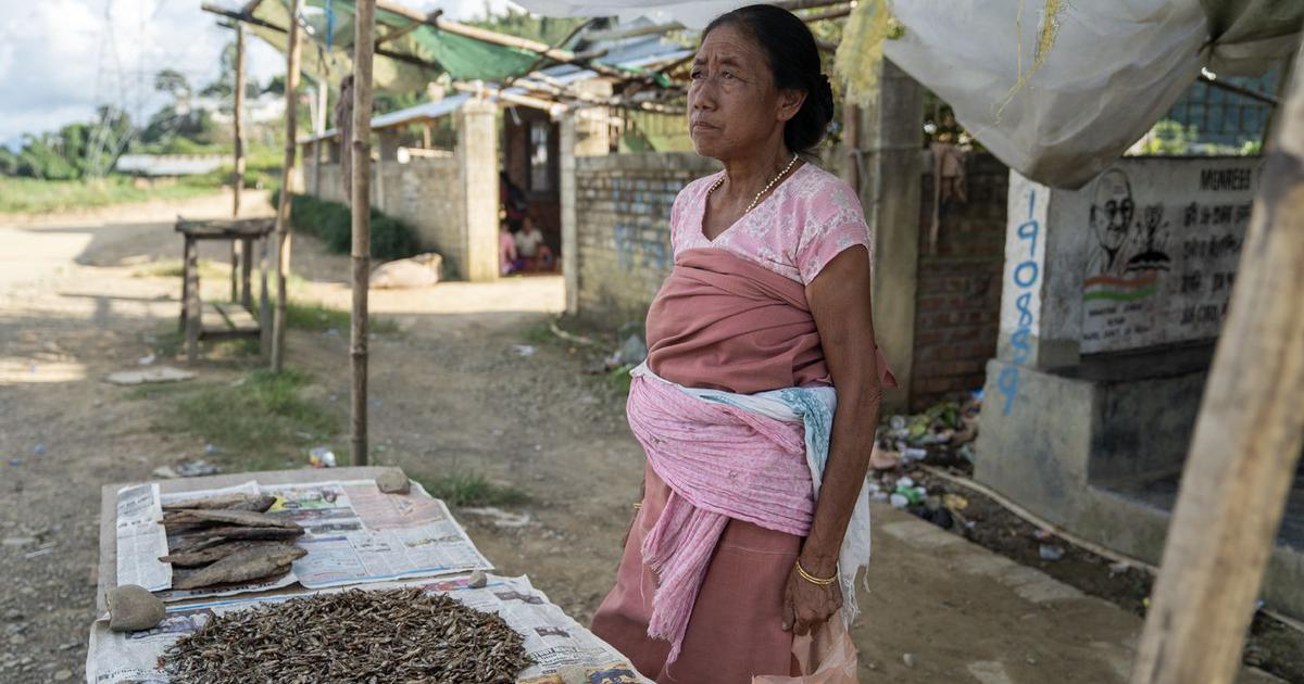 Troubled waters: Why Manipur is fast losing its indigenous fish species