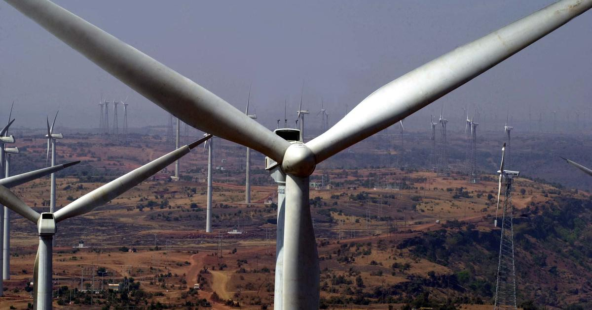 In the Western Ghats, wind farming is making lizards change colour, says new study