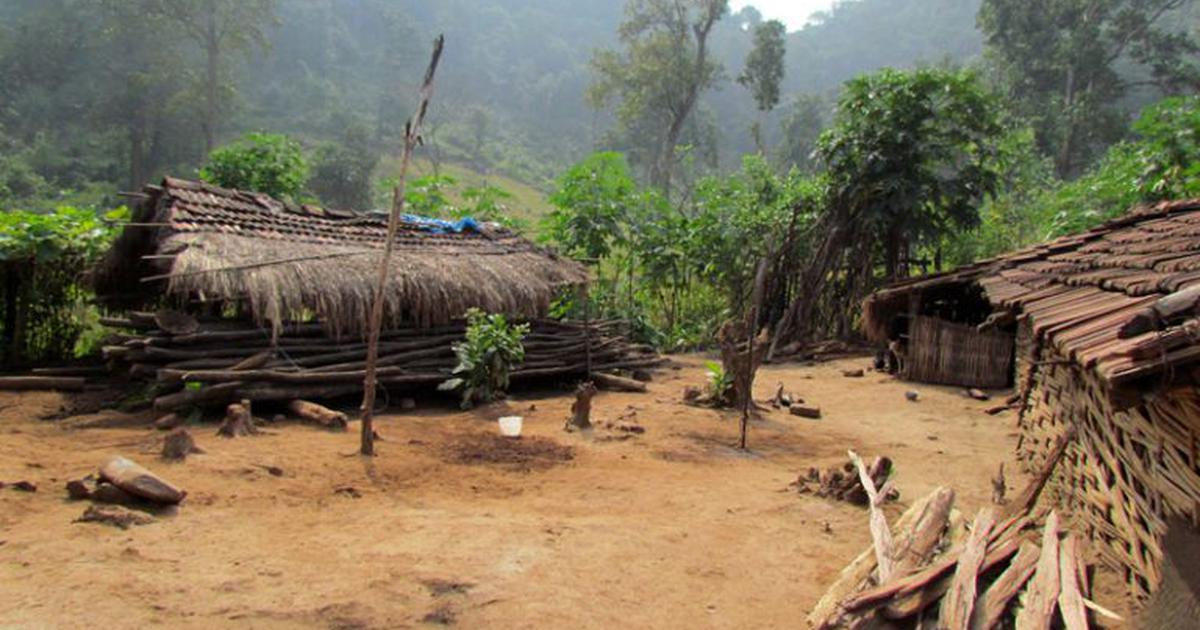 A ground-level analysis of forest loss in Eastern Ghats sheds new light on the role of buffer zones