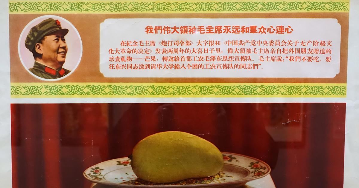 How a Pakistan minister's gift turned the mango into a divine symbol in Mao's China