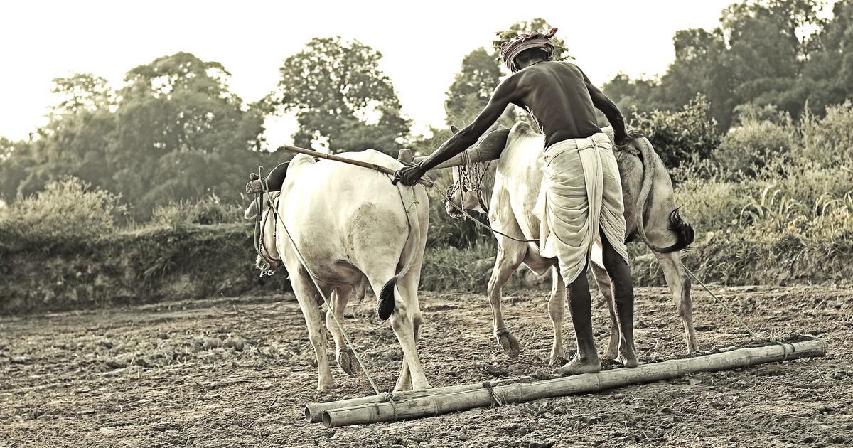 केंद्र सरकार ने राज्यों से छोटे किसानों की पहचान करने को कहा