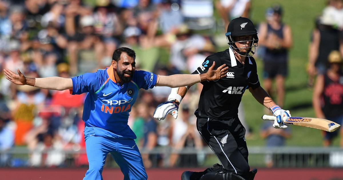 Mohammed Shami's ODI rejuvenation is a welcome boost for India ahead of the World Cup