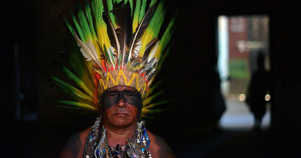 What we can learn about managing our environment from Amazon's indigenous people