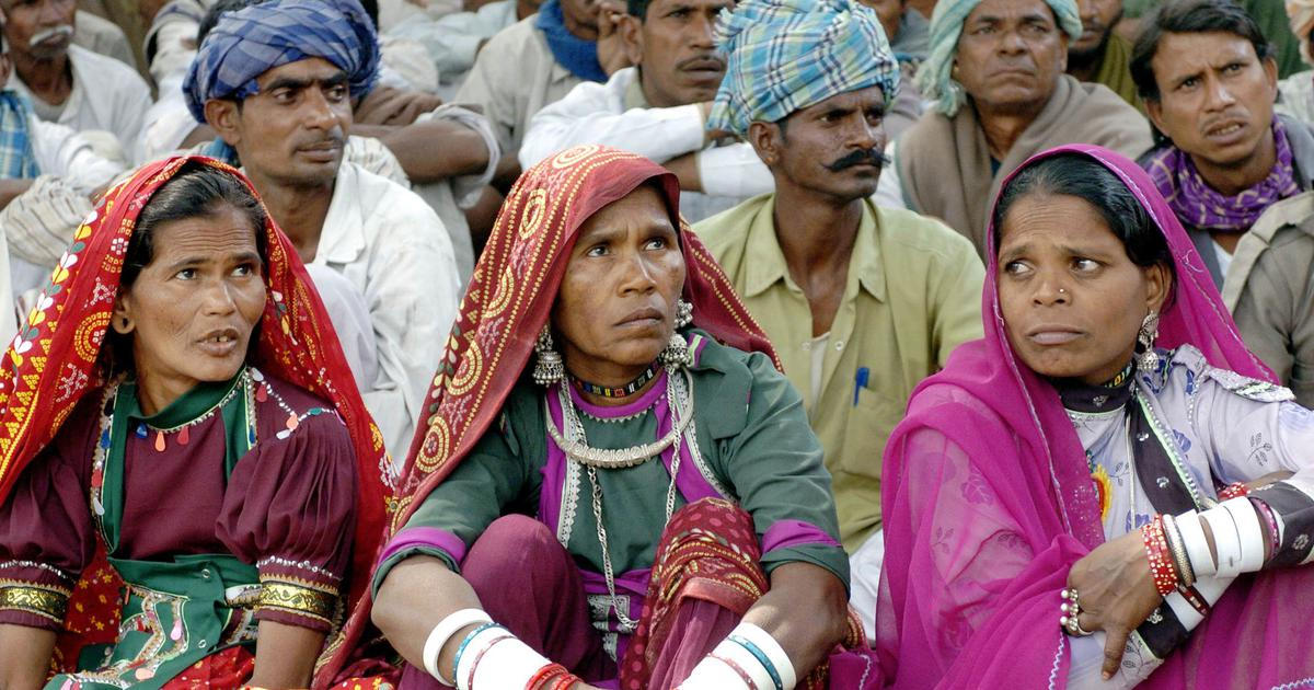 In Rajasthan, Forest Rights Act was wantonly flouted to reject Adivasis' claims to their land