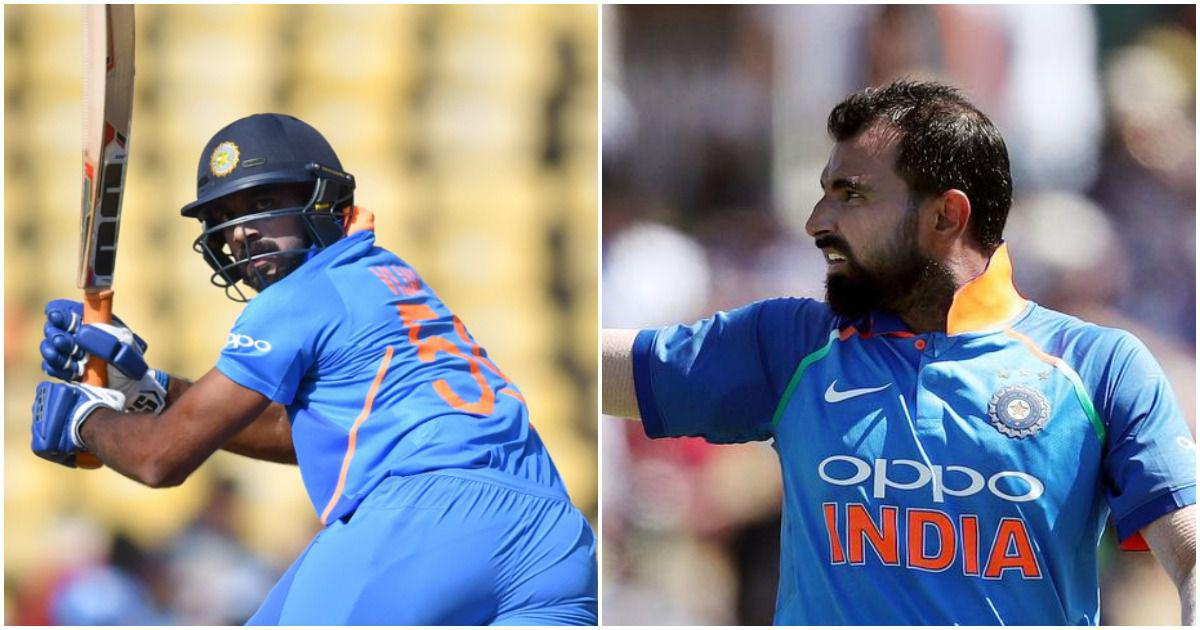 India's World Cup 2019 ladder: Vijay Shankar, Mohammed Shami the big movers in Virat Kohli's squad