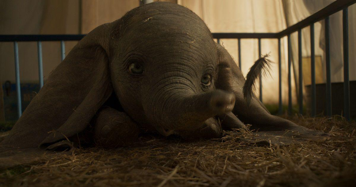 Watch: Photos from Tim Burton's 'Dumbo' starring Colin Farrell,Michael Keaton and Danny DeVito