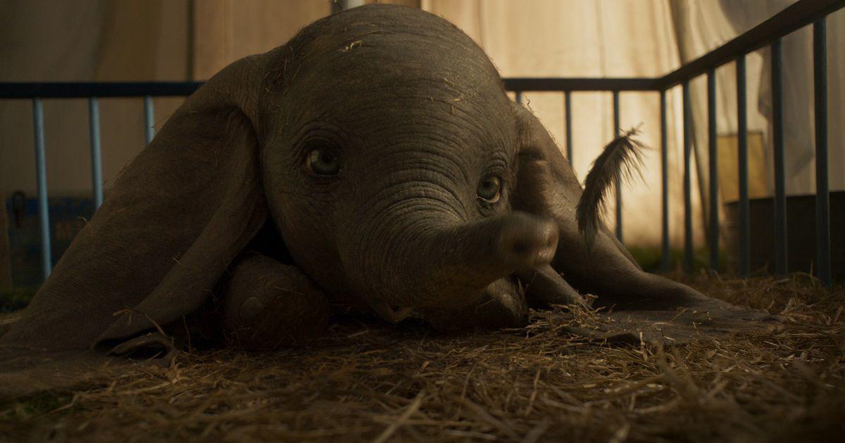 In photos: Disney's flying elephant has new human companions in Tim Burton's 'Dumbo'