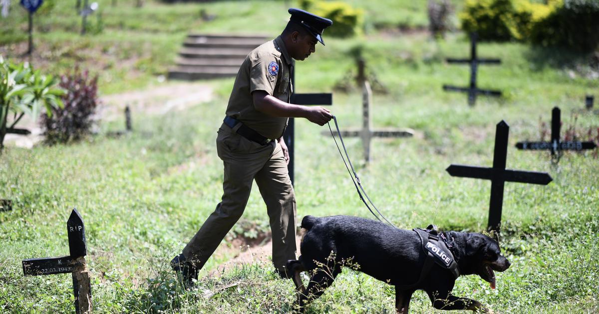 Sri Lanka attacks: President Maithripala Sirisena asks defence secretary, police chief to resign