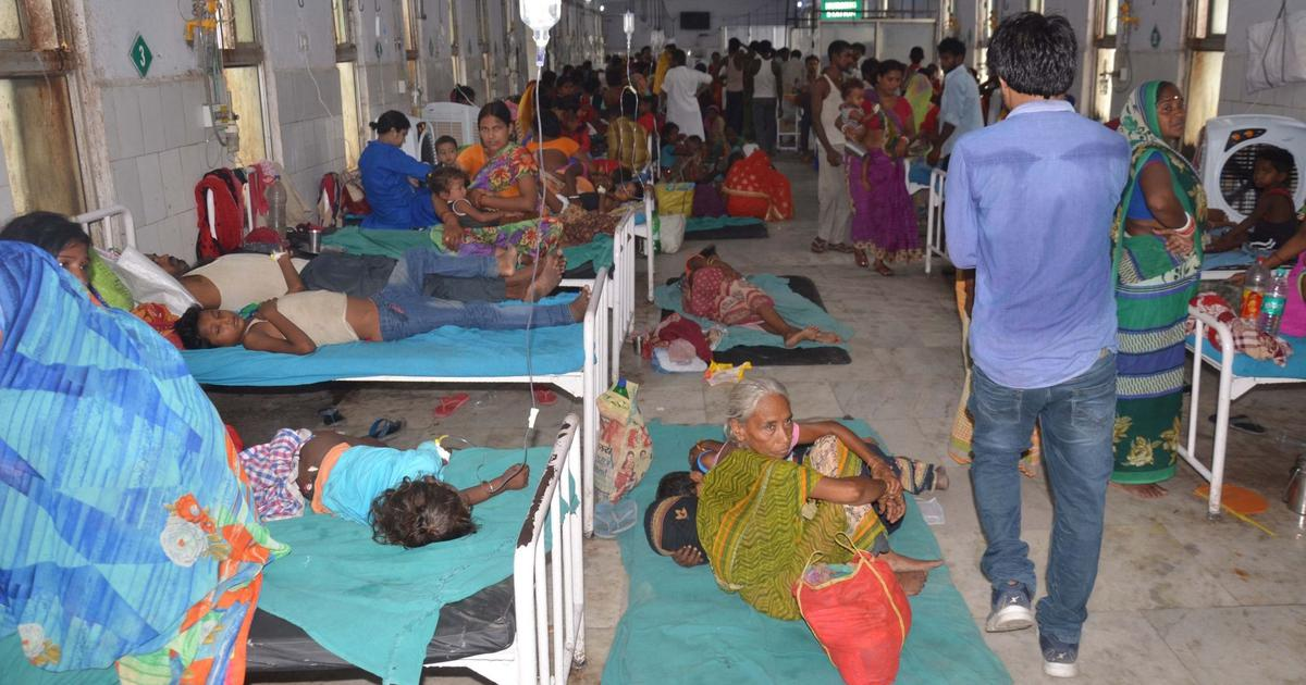 Bihar encephalitis outbreak spreads to 20 districts but officials report decline in number of cases