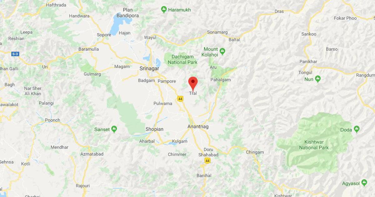 J&K: Security forces kill militant in Tral town of Pulwama district, recover arms and ammunition