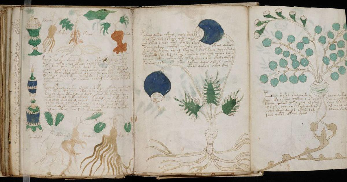 Voynich Manuscript: The best codebreakers have tried and failed to decipher the medieval text