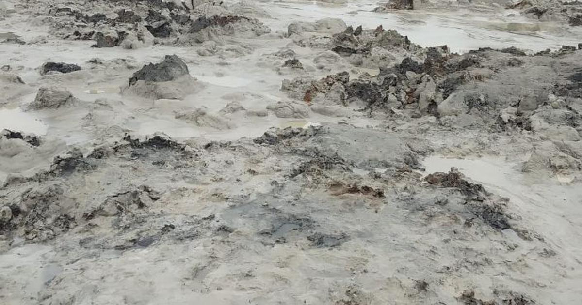 Madhya Pradesh: Essar alleges sabotage after toxic ash leak at power plant in Singrauli