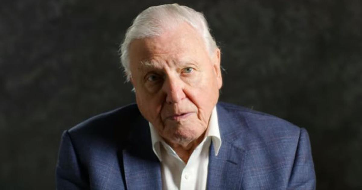 English naturalist, TV presenter David Attenborough to get Indira Gandhi Peace Prize for 2019