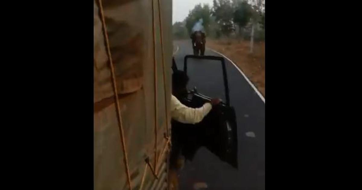 Watch an elephant chasing a truck as a desperate driver reverses the vehicle