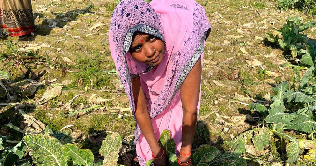 In these Uttar Pradesh villages, women's fight against climate change is redefining gender norms