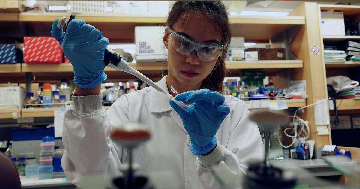 चीन की एक लैब का बड़ा दावा, कहा - शायद कोरोना वायरस संकट खत्म करने वाली दवा मिल गई है