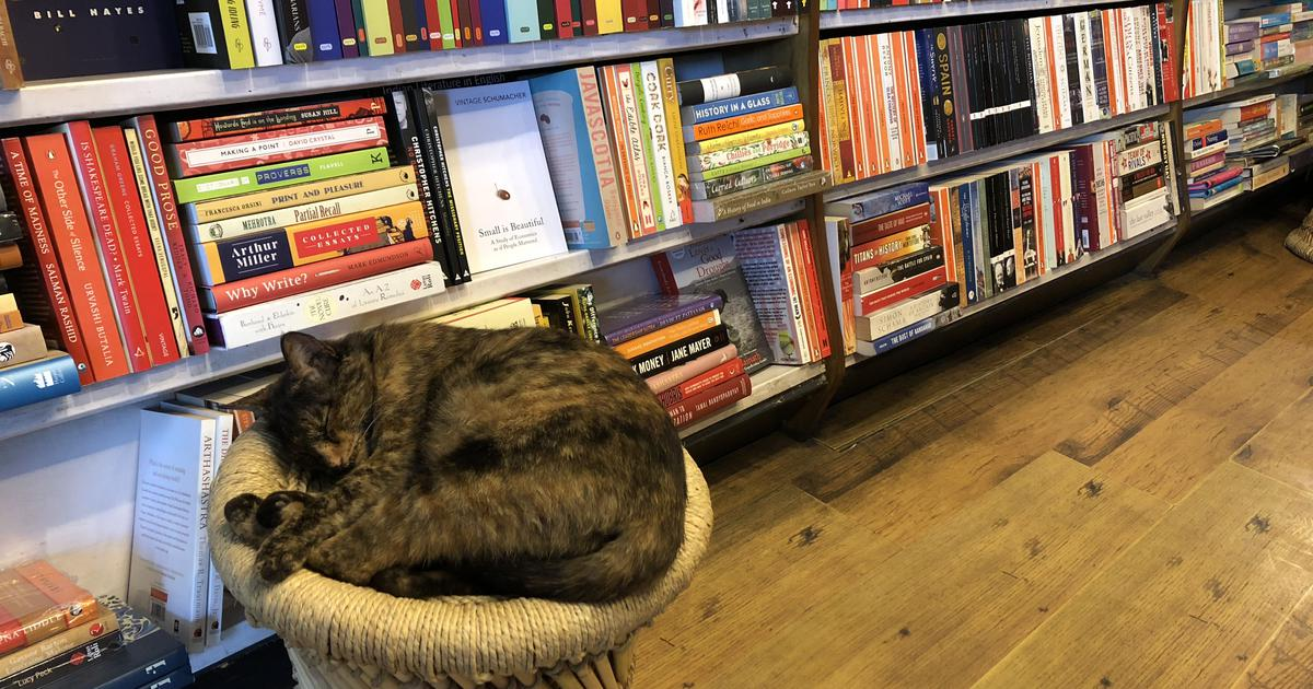 Independent bookshops: What the lockdown, Covid-19 and its aftermath may mean for them