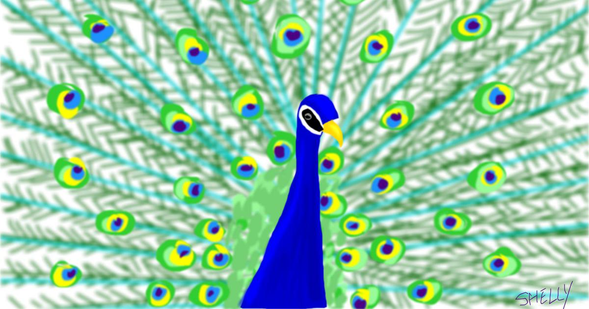 Listen: Hindustani melodies that echo with the cry of the peacock
