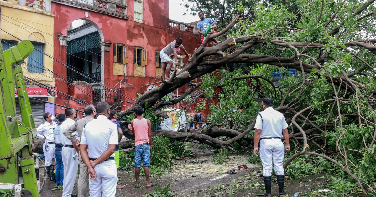 A day after Amphan, Kolkata residents take stock of the damage left by worst storm in living memory