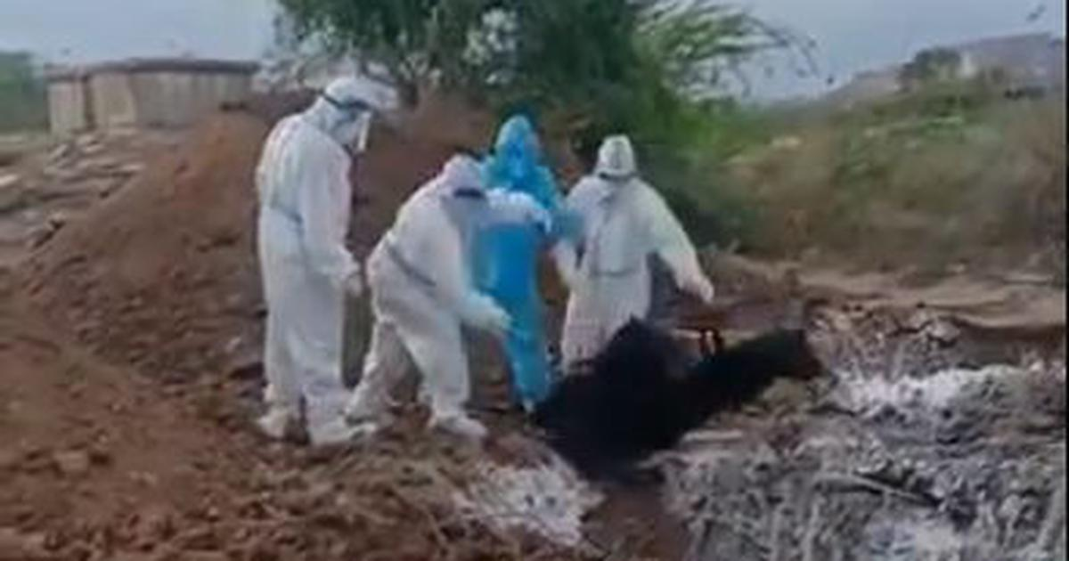 Coronavirus: Video shows frontline workers tossing bodies into pit in Karnataka, employees suspended