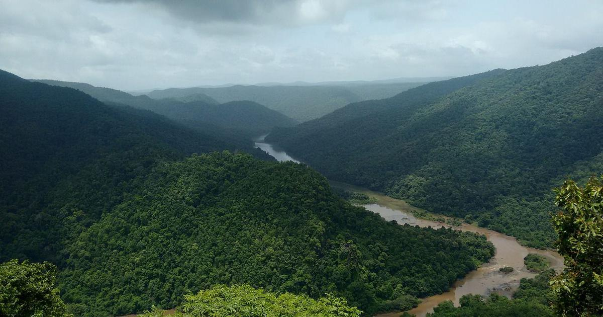 In one of India's eight biodiversity hotspots, unchecked development has reduced forest cover by 26%