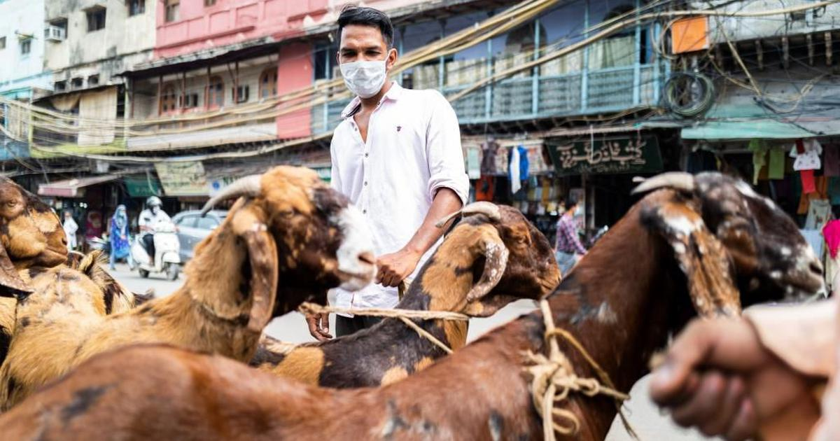 A goat-less Bakri Eid: Covid-19 is dampening festival sales across India