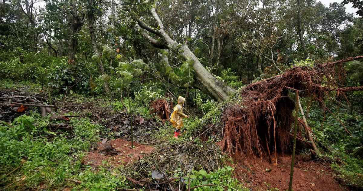 Heavy rain is not the only cause of the floods and landslides in Karnataka's Kodagu district