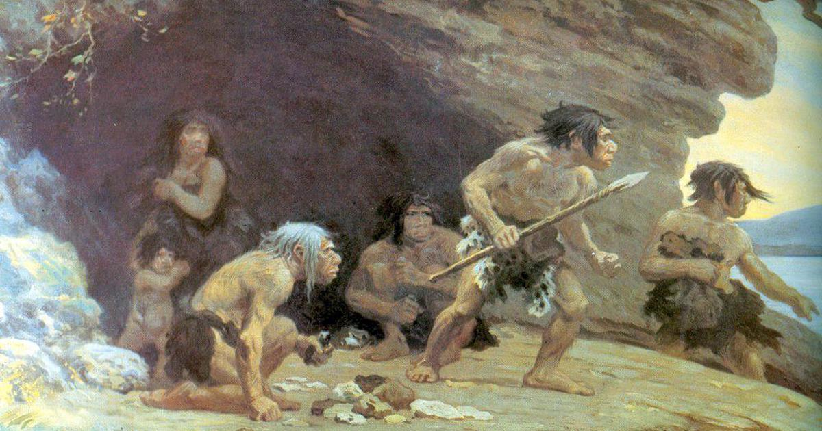 Discovery of 200,000-year-old beds throws light on the complex behaviour of ancient humans