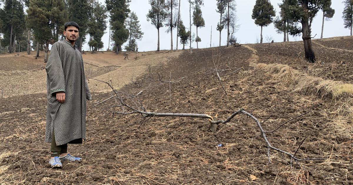 In J&K, the government started a massive encroachment drive. Then it remembered forest rights