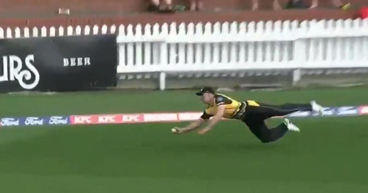 Watch: Netherlands' Logan van Beek pulls off a jaw-dropping catch in New Zealand's Super Smash game