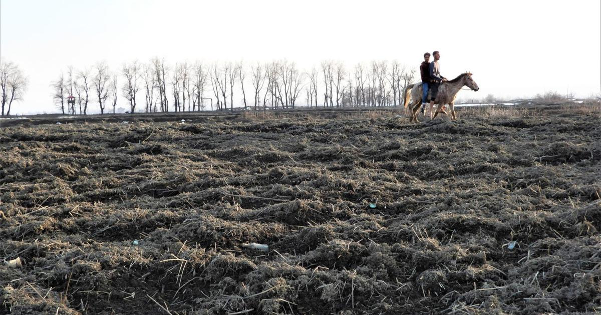 A project to protect Srinagar from floods has resulted in serious damage to a crucial wetland
