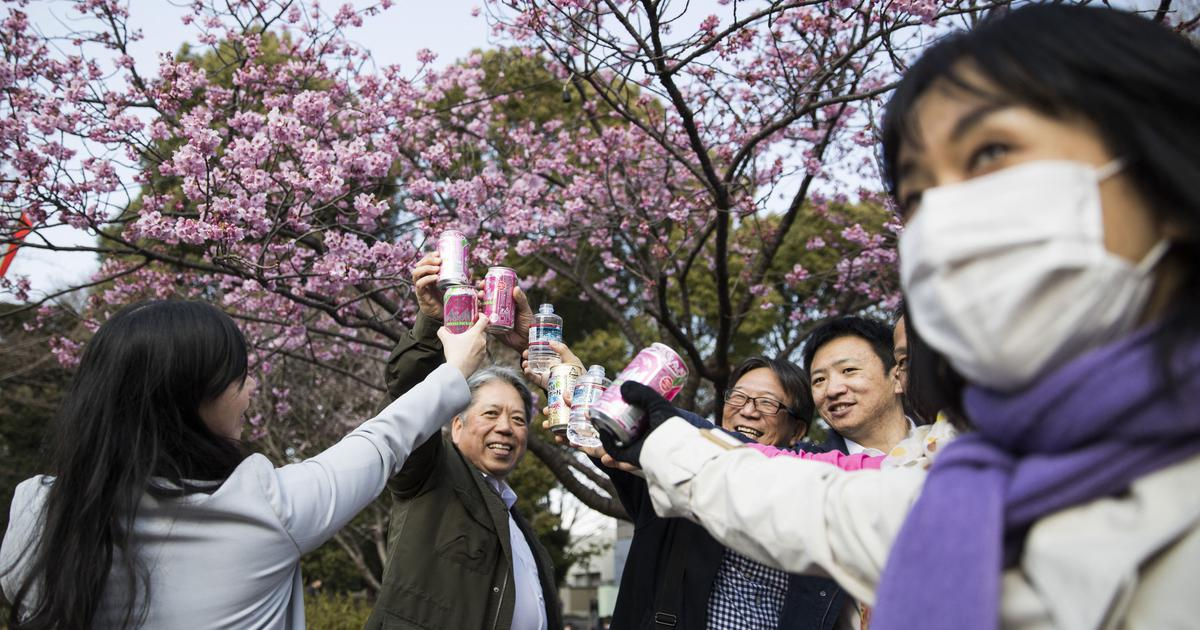 The long history of cherry blossom viewing parties in Japan