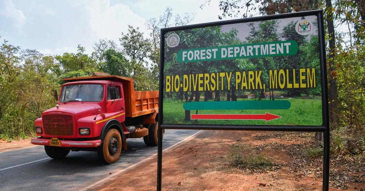 Civil society scores a win as an SC-appointed panel red-flags projects in Goa's forests