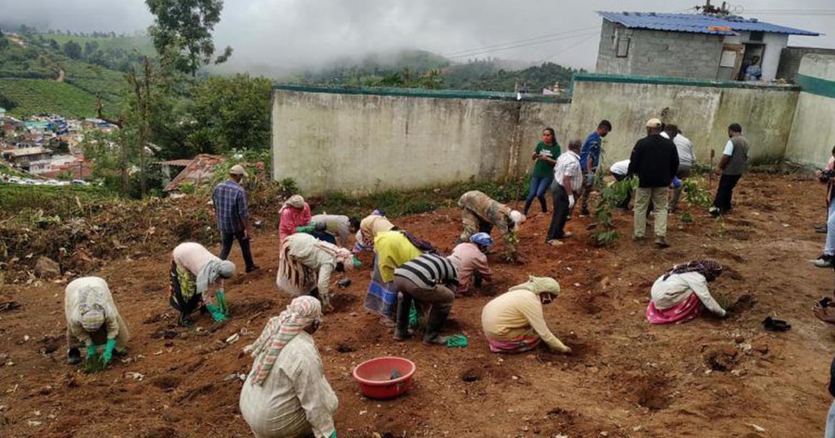 Another battle looms as environmentalists fight to protect the Nilgiris