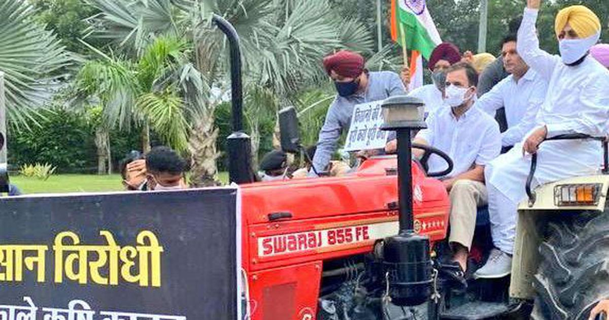 Rahul Gandhi drives a tractor to Parliament, says 'I have brought farmers' message'