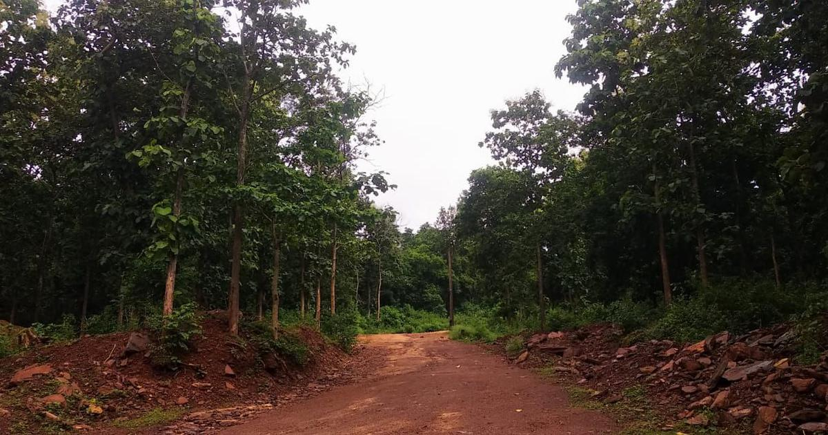 Iron ore mining is driving deforestation in Chhattisgarh and hurting its Adivasis