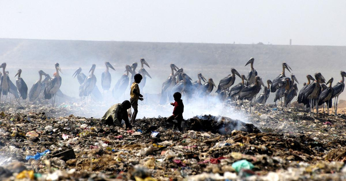 How plastic travels across geographies – and ends up in humans
