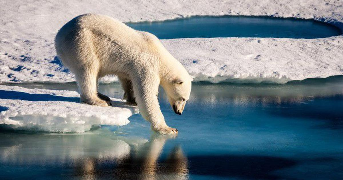 Arctic sea ice is being thinned not just by warm air, but also by ever-warmer waters from below
