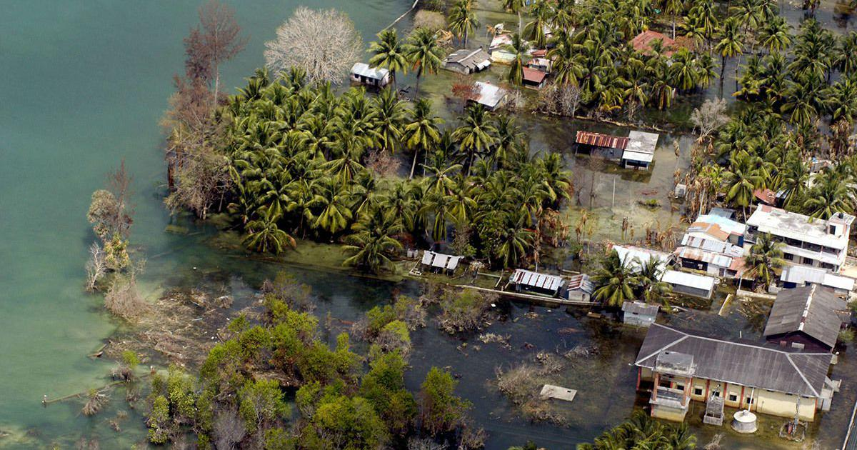 Plan to develop Andaman and Nicobar Islands into tourist hub has put its forests under pressure