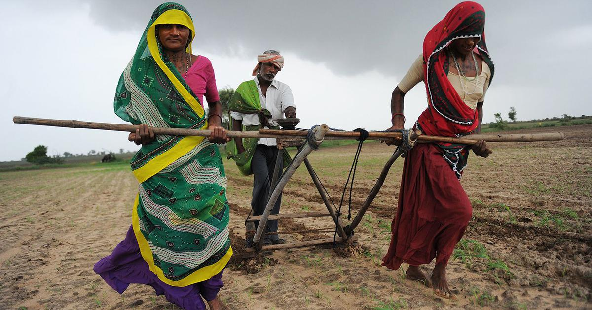 BJP 2014 manifesto check: Has the Modi government come good on its promises to farmers?