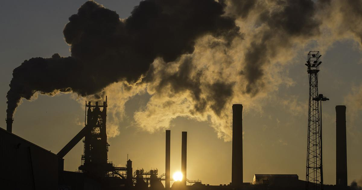 Centre's plan to let some environmental violators off the hook is legally untenable, say lawyers
