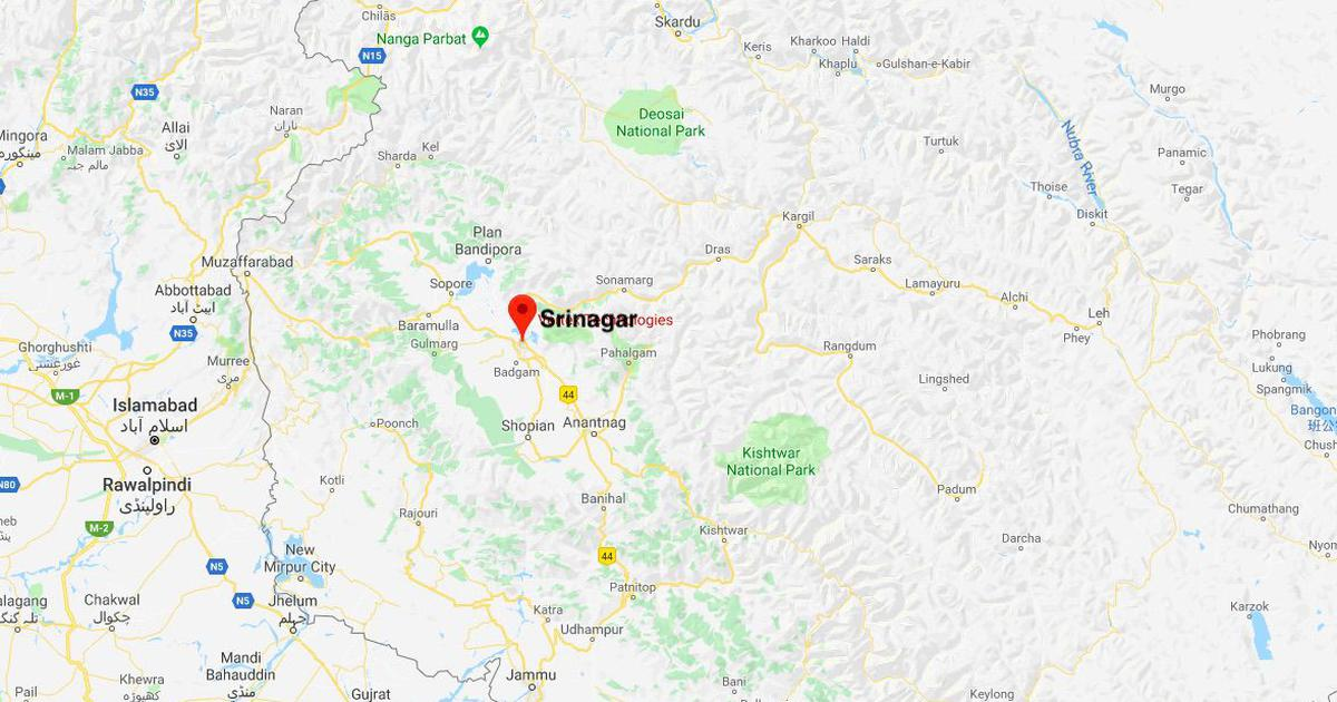 Jammu and Kashmir: Suspected militants shoot dead two National Conference workers in Srinagar