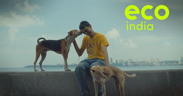 Eco India, Episode 4: Meet the man who is fighting for the rights of stray dogs in Mumbai