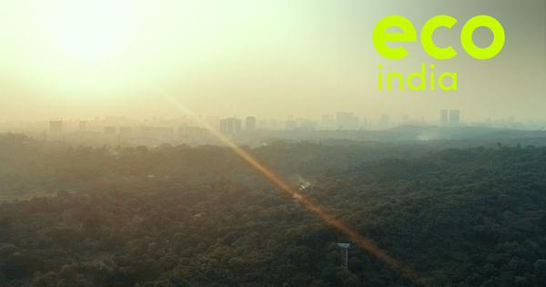 Eco India, Episode 6: Why it is crucial to protect Mumbai's green lung, Aarey