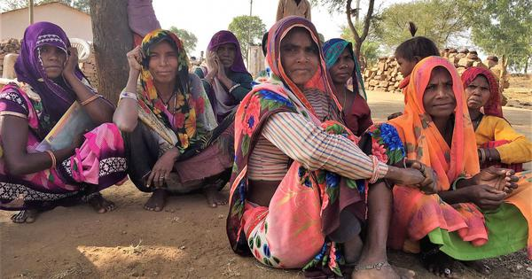 Rajasthan polls: In one of India's poorest areas, villagers lament death of lifeline against hunger