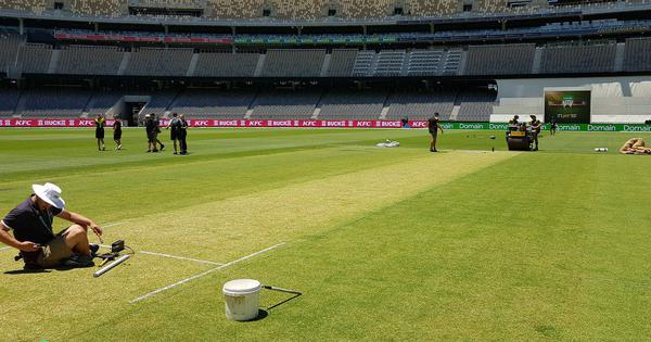 India in Australia: Perth curator says WACA is 'producing the bounciest pitch' possible for 2nd Test