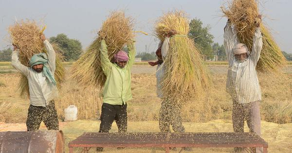 Startups are helping North India's farmers to dispose of crop residue cleanly (and reduce pollution)