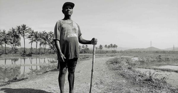 Why a Goan musician decided to make a documentary on the farming practices of his village