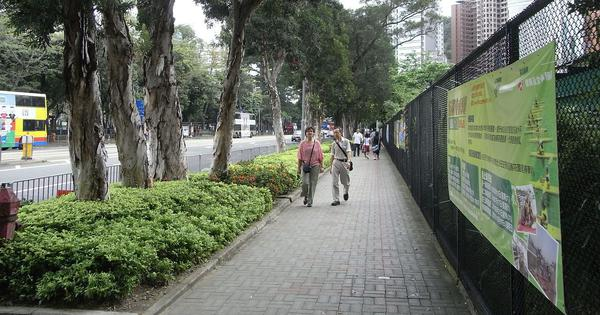 City trees reduce daytime heat. To curb sweltering nights, planners must minimise pavements