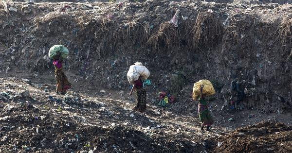 Delhi: Garbage mountain at Ghazipur landfill will be taller than Taj Mahal by 2020, says report
